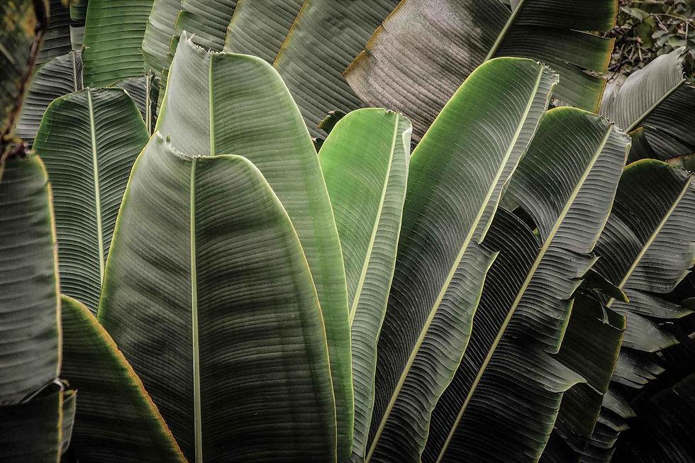 Florian Graf Photography