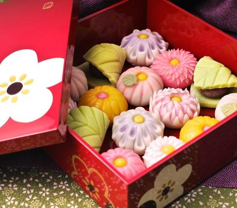 """Jyounamagashi (traditional Japanese """"Petit four"""")"""