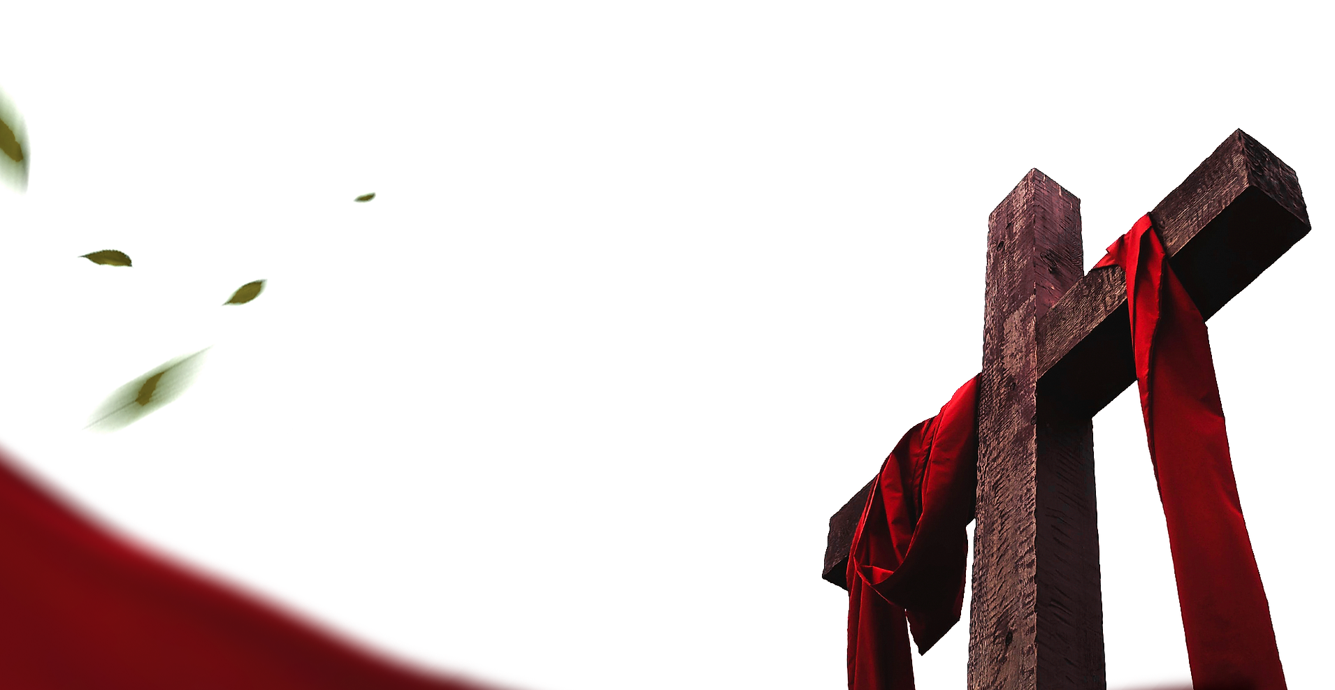 Banner-Home.png