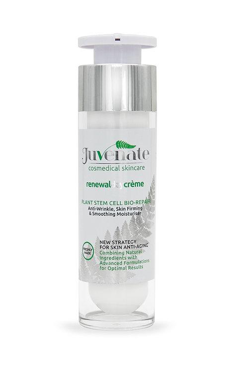 Juvenate, The Beauty Depot, Renewal Day Creme