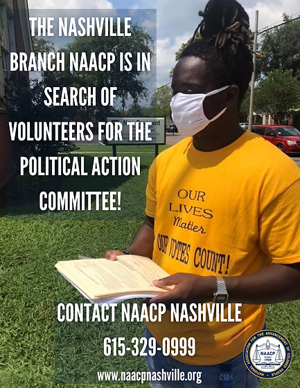 Political Action Committee Flyer png.png