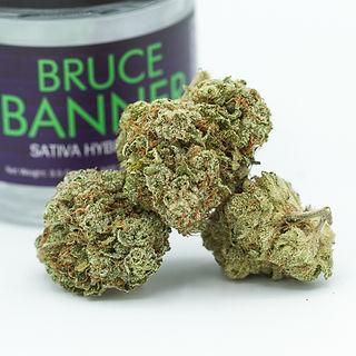 Bruce Banner-8.jpg