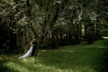 Luc & Alya Wedding Photos-233.jpg