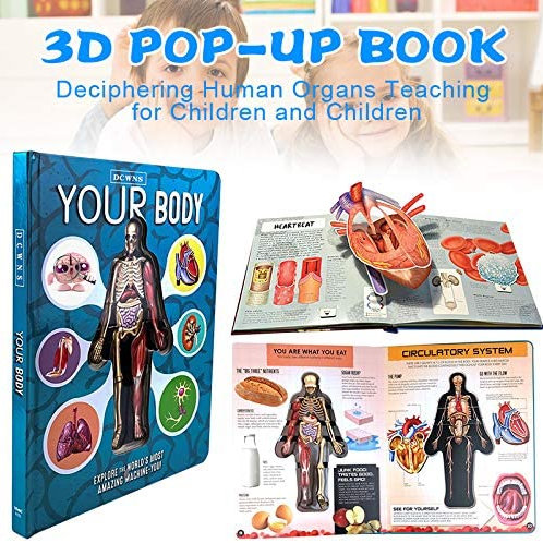 Your Body 3D anatomy book