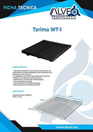 Tarima WT-1.jpg