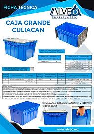 Caja Grande Culiacan.jpg