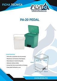 Pa-20 Pedal.jpg