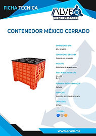 Contenedor Mexico Cerrado.jpg