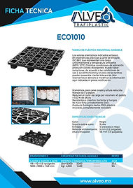 Eco1010.jpg