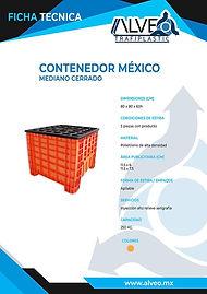 Contenedor Mexico Mediano Cerrado.jpg