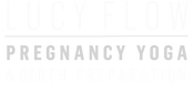 Lucy flow logo web .png