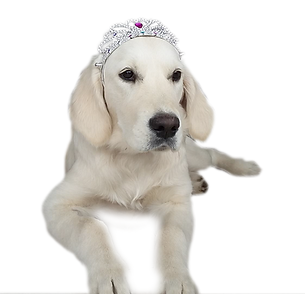NEWLUCK prinsesse