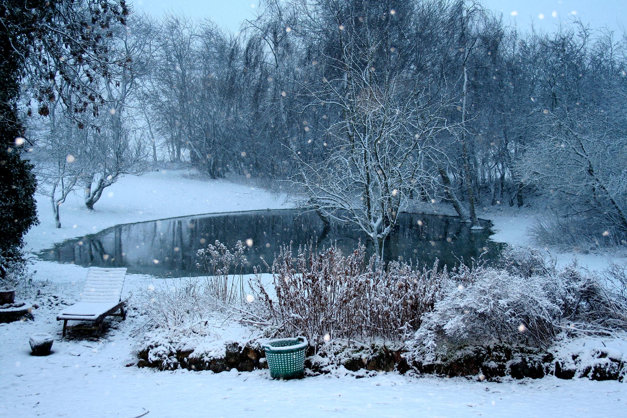 kennel newluck vintersø