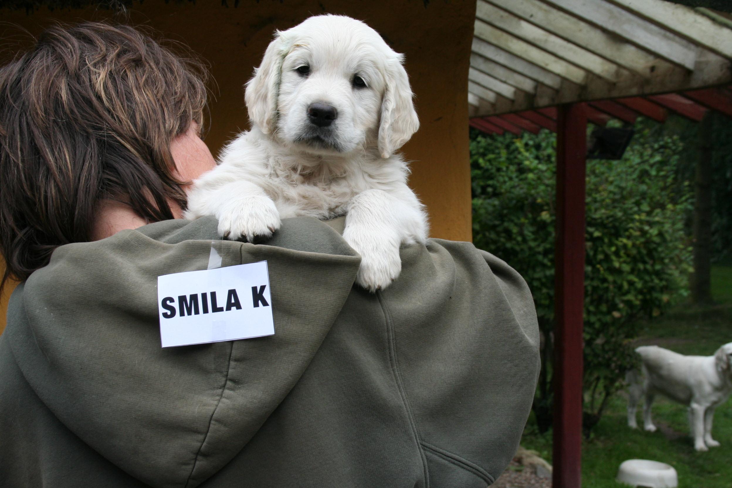 SMILA (1)
