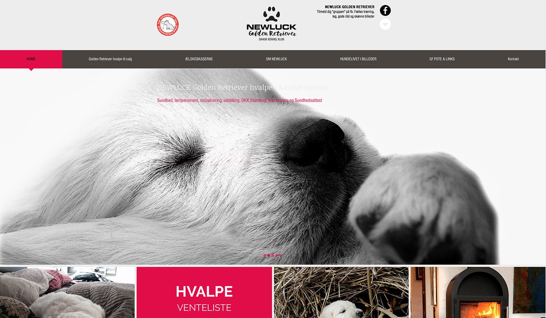 FICH&CO hjemmeside hundekennel