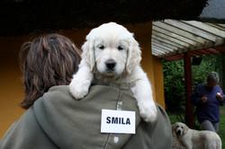 SMILA (2)