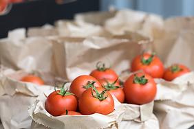 TomatoBags2.png