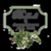 baldocchi logo_png.png