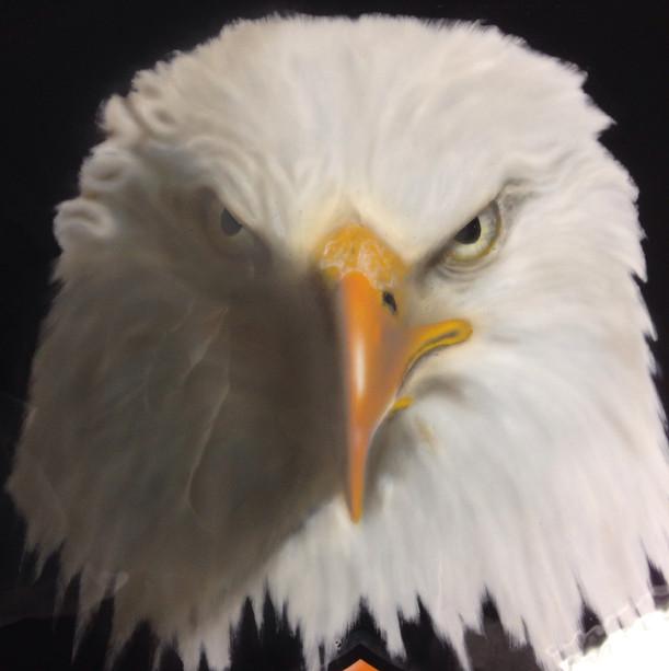 Pannello eagle Aerografia