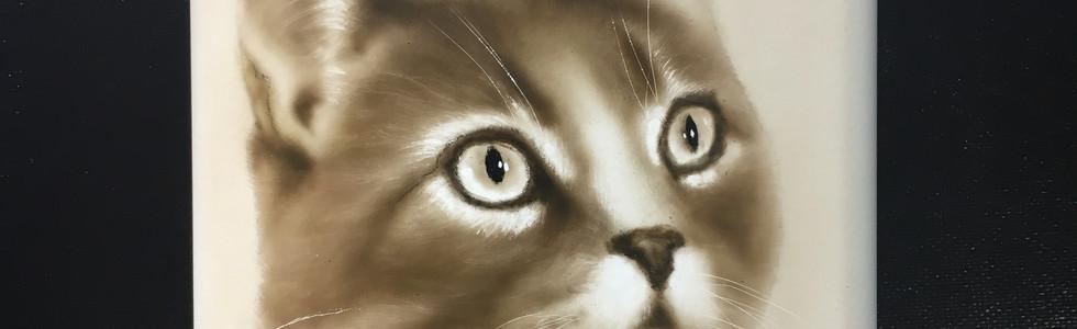 Fiaschetta gatto Aerografia