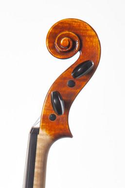 violon 3-3.jpg