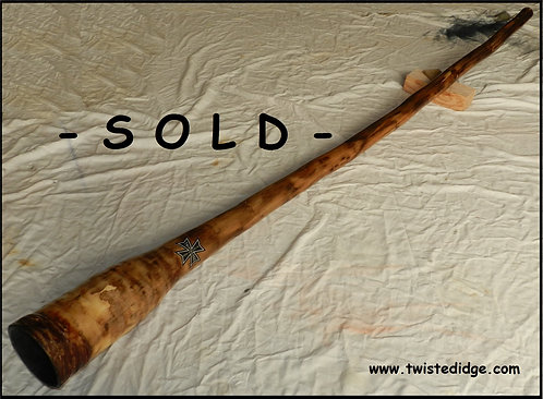 SOLD Agave Didge 038