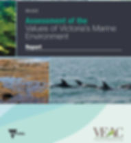 VEAC Marine Values Report 2.JPG