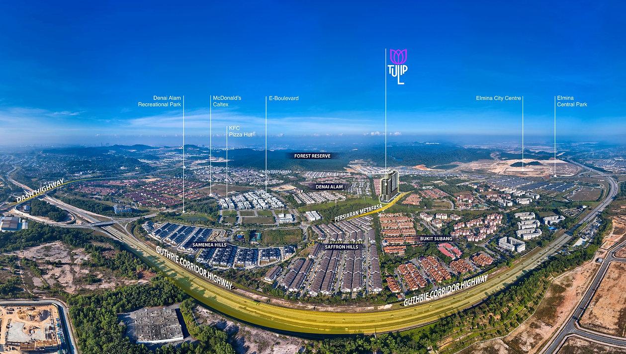 aerial%20view_edited.jpg