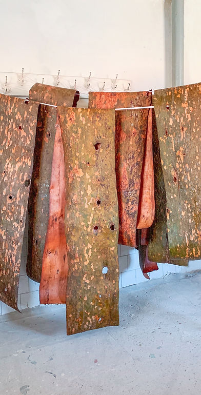 Processed bark drying.jpg