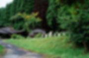 九州福岡県の小石原は昔から窯元巡りをする観光客が多く訪れる場所です。窯元が複数あり、それぞれの個性を持った器を生産しています。