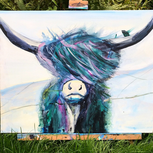 Our friendly and highly popular highland cow