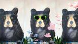 Paint a bear