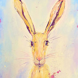 Spring time Hare