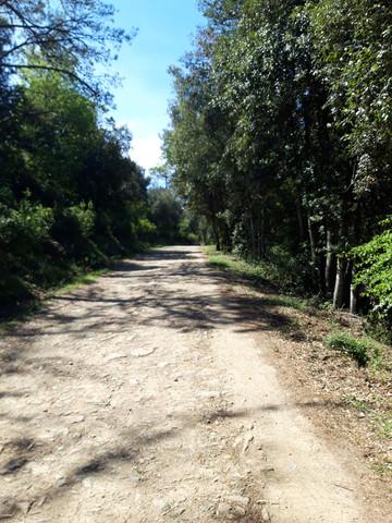 Noleggio Country Ebike Rent Isola d'Elba - Vecchio Molino a Vento
