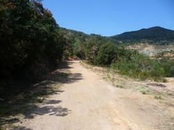 Tour Parco Minerario Rio Marina545