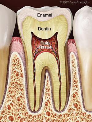 healthy-tooth.jpg