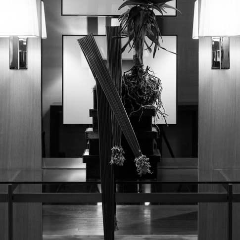 Photo: katachi PHOTO CREATIVE 牧野 賢一郎 web : https://www.katachi-photocreative.com/   Powered by improve Co., Ltd.