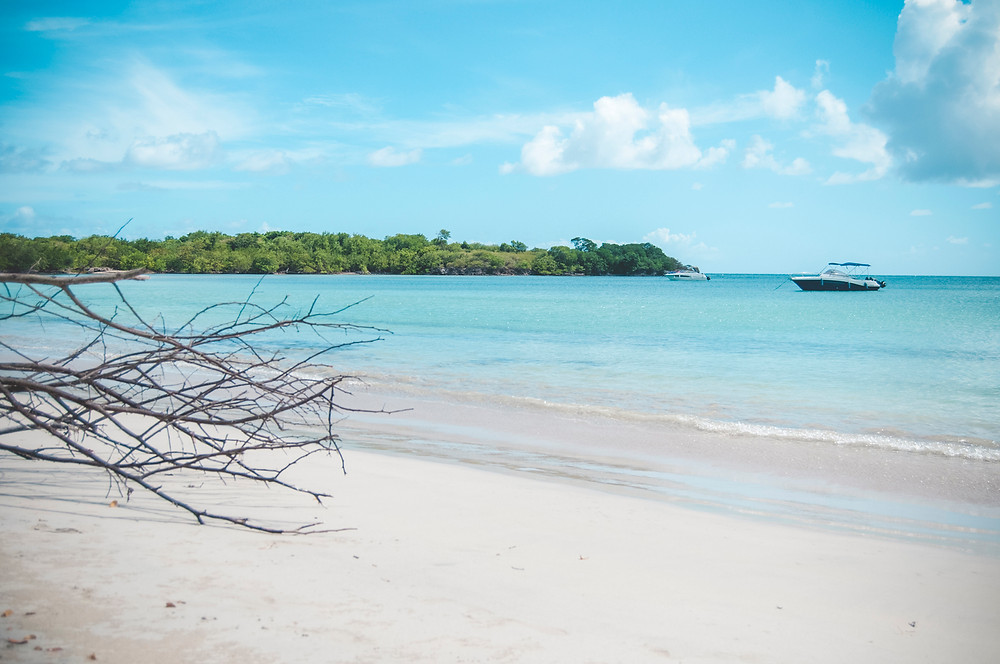 Plage Anse Moustique Martinique