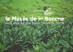 Le Musée de la Banane, une visite sous les plus hautes herbes du monde