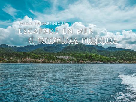 Balade en mer au Prêcheur