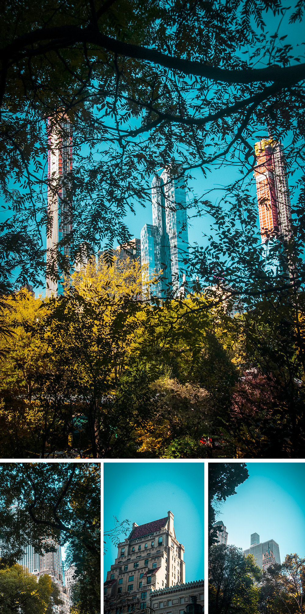 NY Central Parc