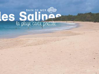 Les Salines, la plage carte postale de la Martinique…