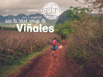Balade dans la vallée de Vinales - Cuba
