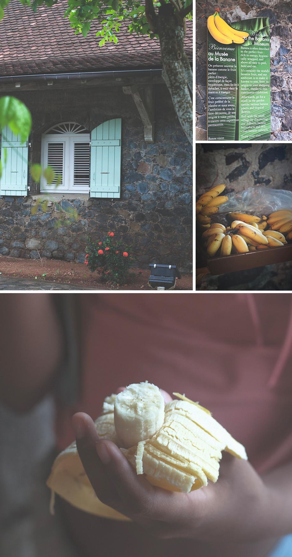 Musée de la Banane à Sainte-Marie. Martinique