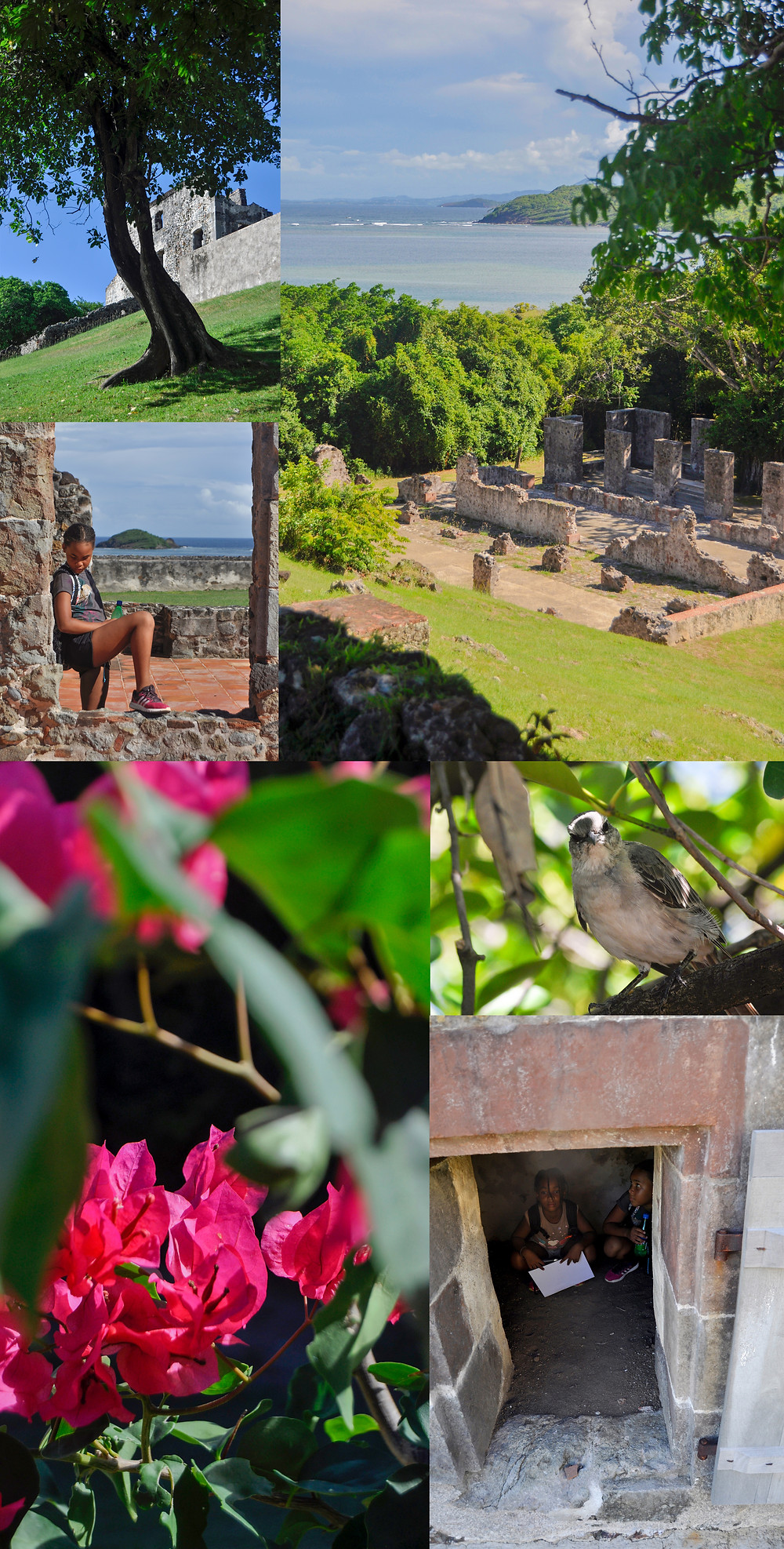 Presqu'île Caravelle Tartane Martinique Chateau Dubuc