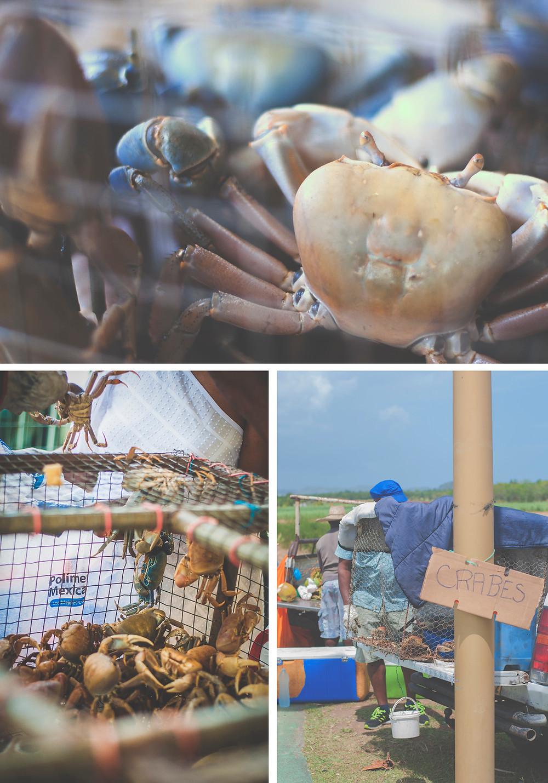Crabes vendus en martinique