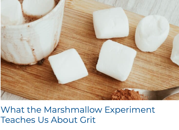 What the Marshmallow Experiment Teaches Us About Grit
