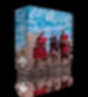 BOX010-(2).png