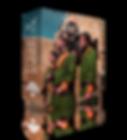 BOX010.png