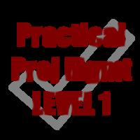 Practical Project Management LEVEL 1 - PMI